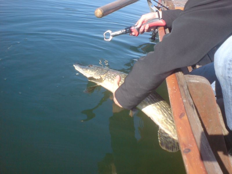 pike release 2